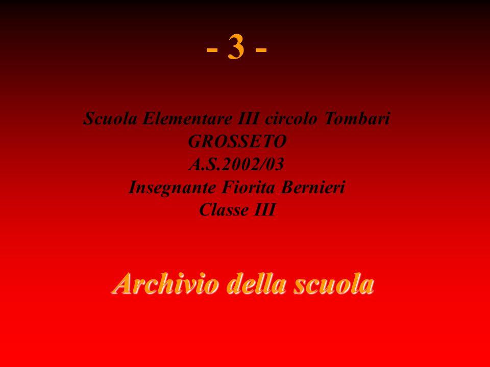 Archivio della scuola - 3 - Scuola Elementare III circolo Tombari GROSSETO A.S.2002/03 Insegnante Fiorita Bernieri Classe III