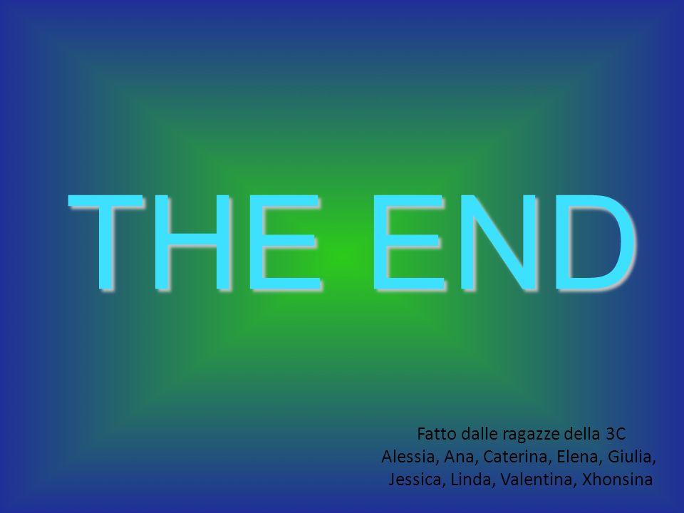 THE END Fatto dalle ragazze della 3C Alessia, Ana, Caterina, Elena, Giulia, Jessica, Linda, Valentina, Xhonsina