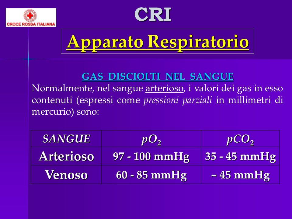 CRI Apparato Respiratorio GAS DISCIOLTI NEL SANGUE Normalmente, nel sangue arterioso, i valori dei gas in esso contenuti (espressi come pressioni parz