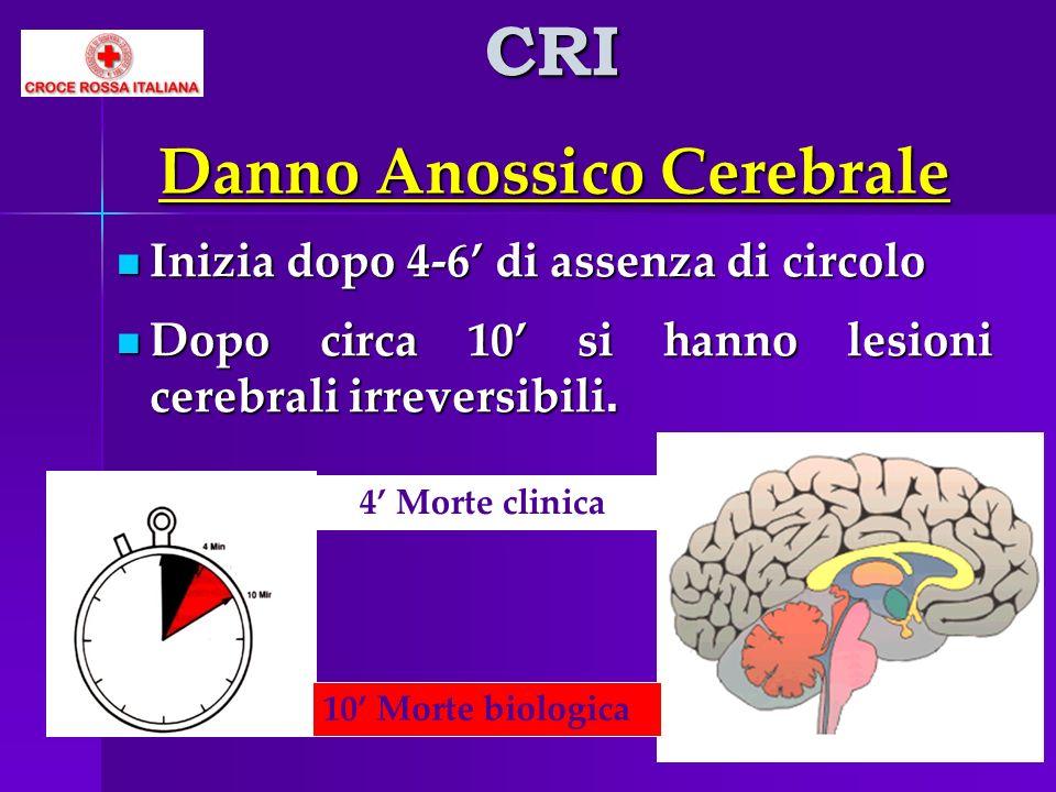 Danno Anossico Cerebrale Inizia dopo 4-6 di assenza di circolo Inizia dopo 4-6 di assenza di circolo Dopo circa 10 si hanno lesioni cerebrali irrevers