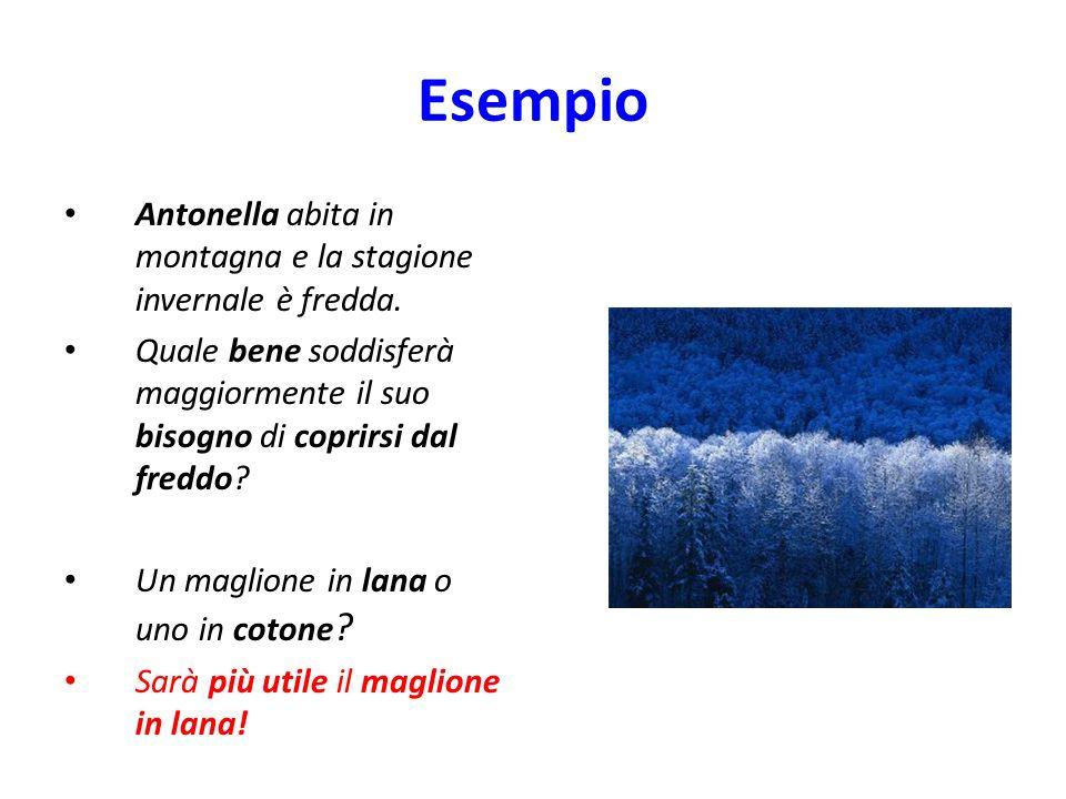 Esempio Antonella abita in montagna e la stagione invernale è fredda. Quale bene soddisferà maggiormente il suo bisogno di coprirsi dal freddo? Un mag