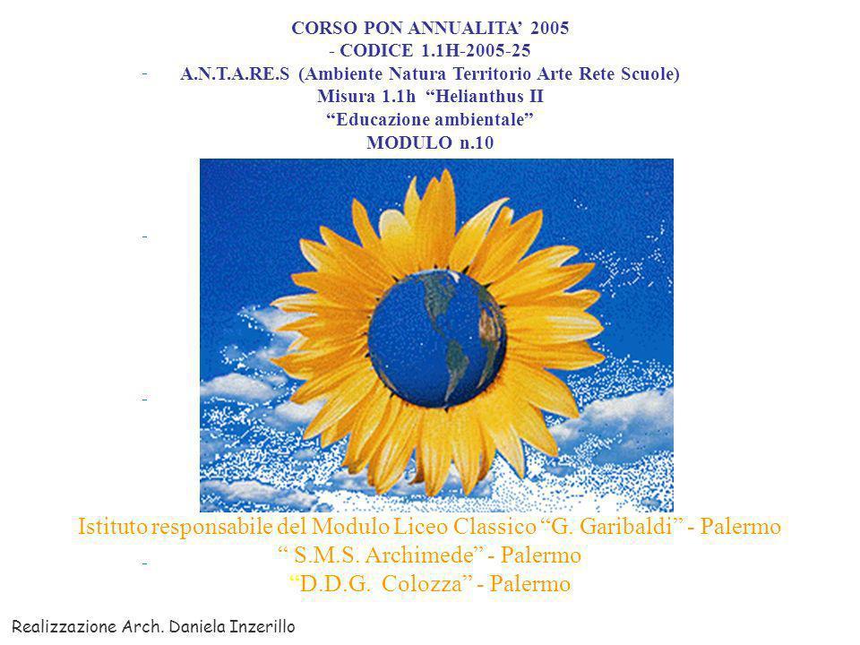 CORSO PON ANNUALITA 2005 - CODICE 1.1H-2005-25 A.N.T.A.RE.S (Ambiente Natura Territorio Arte Rete Scuole) Misura 1.1h Helianthus II Educazione ambientale MODULO n.10 Istituto responsabile del Modulo Liceo Classico G.