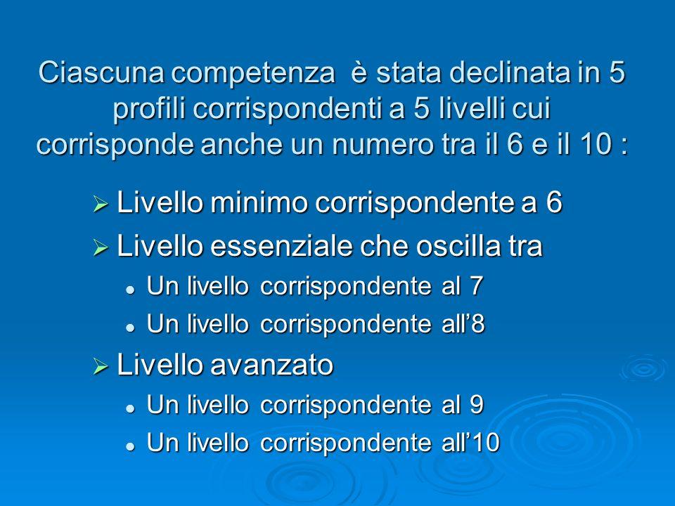 Ciascuna competenza è stata declinata in 5 profili corrispondenti a 5 livelli cui corrisponde anche un numero tra il 6 e il 10 : Livello minimo corris