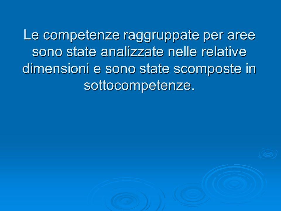 Le competenze raggruppate per aree sono state analizzate nelle relative dimensioni e sono state scomposte in sottocompetenze.