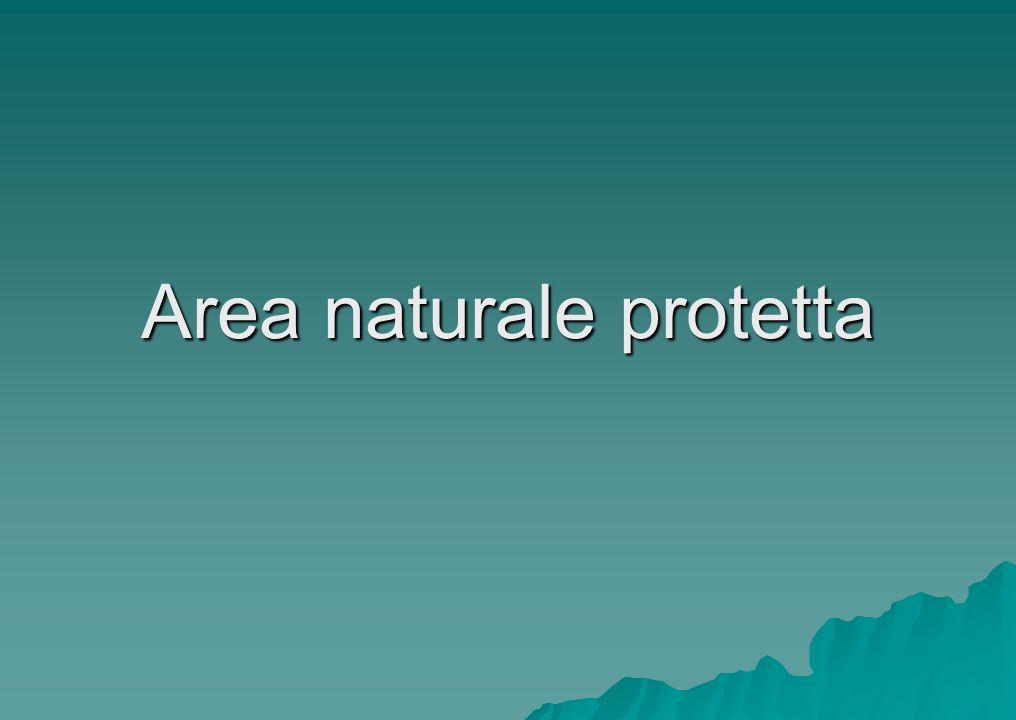 Area naturale protetta