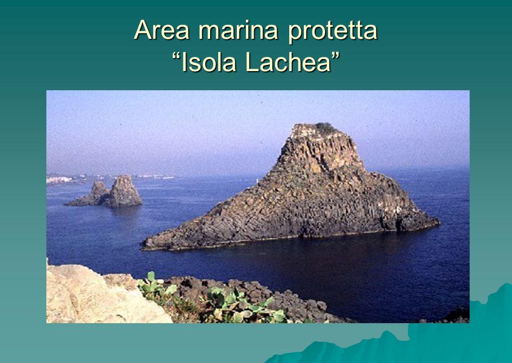 Area marina protetta Isola Lachea