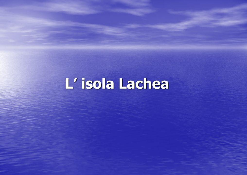 L Isola Lachea ha una pianta allungata, quasi ellittica con l asse maggiore di circa 250 m e quello minore di circa 150 m, e consuperficie di poco più di due ettari.