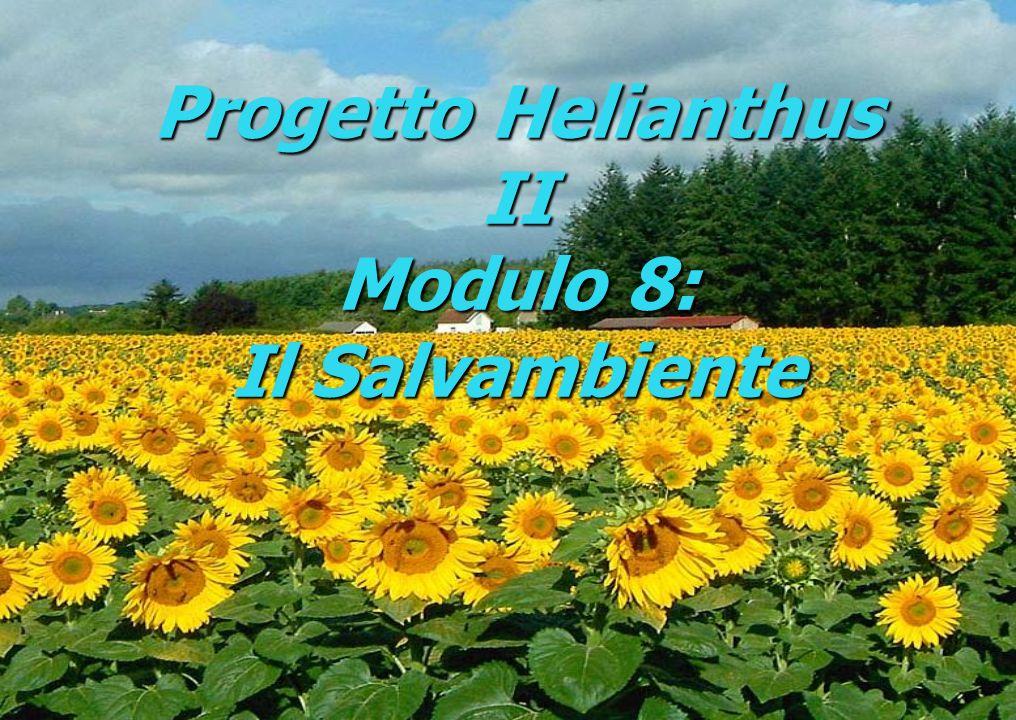 Progetto Helianthus II Modulo 8: Il Salvambiente
