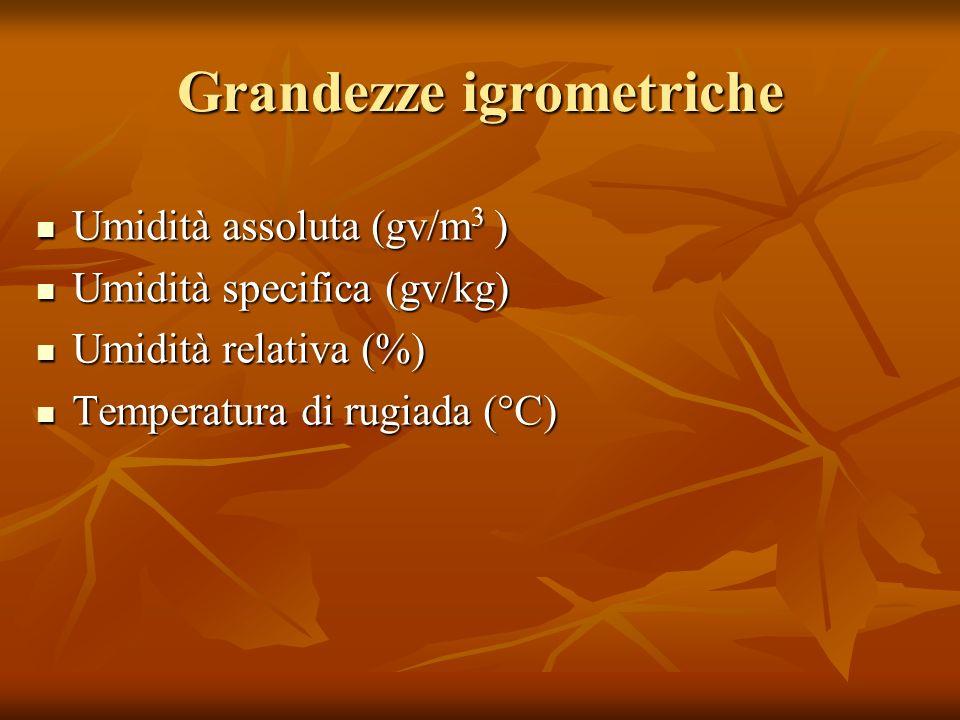 Grandezze igrometriche Umidità assoluta (gv/m 3 ) Umidità assoluta (gv/m 3 ) Umidità specifica (gv/kg) Umidità specifica (gv/kg) Umidità relativa (%)