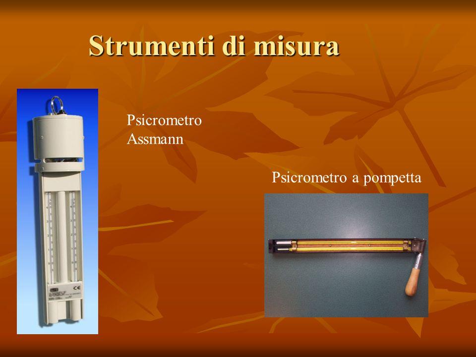 Strumenti di misura Psicrometro Assmann Psicrometro a pompetta