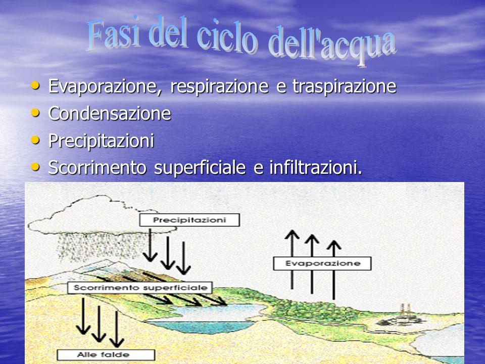 Evaporazione, respirazione e traspirazione Evaporazione, respirazione e traspirazione Condensazione Condensazione Precipitazioni Precipitazioni Scorri