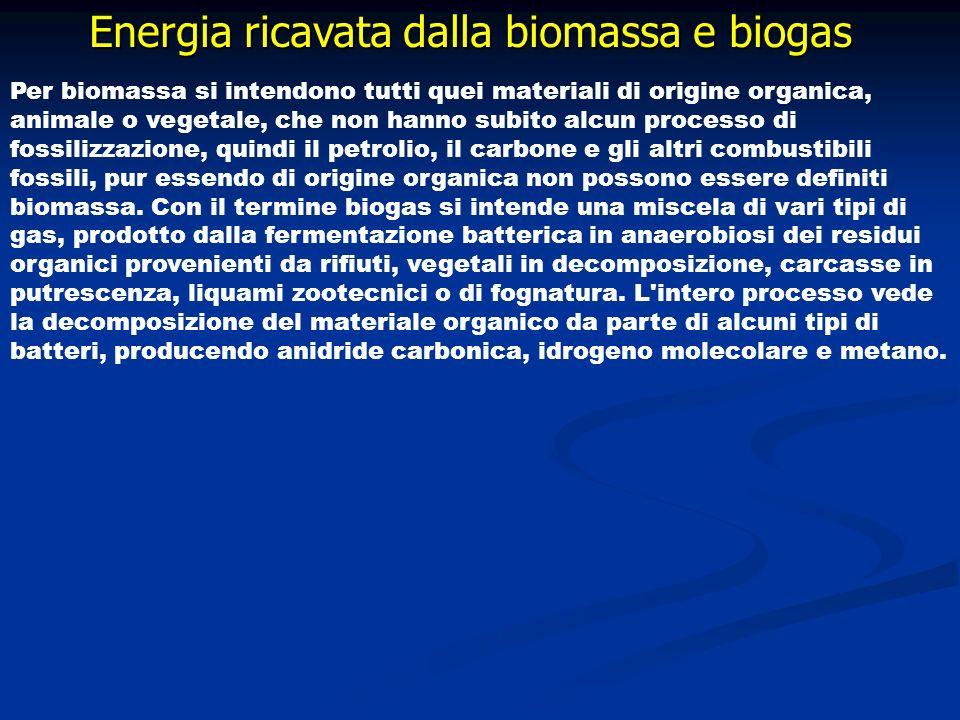 Energia ricavata dalla biomassa e biogas Per biomassa si intendono tutti quei materiali di origine organica, animale o vegetale, che non hanno subito