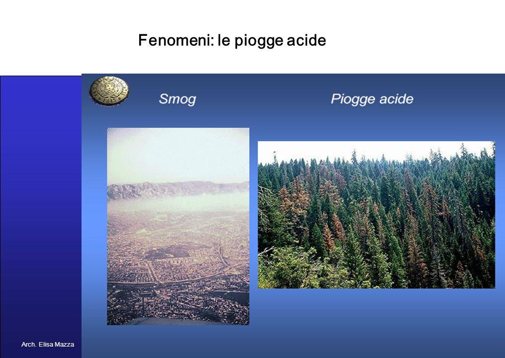 MANCUSO 2005 Fenomeni: inquinamento atmosferico e idrico Arch. Elisa Mazza