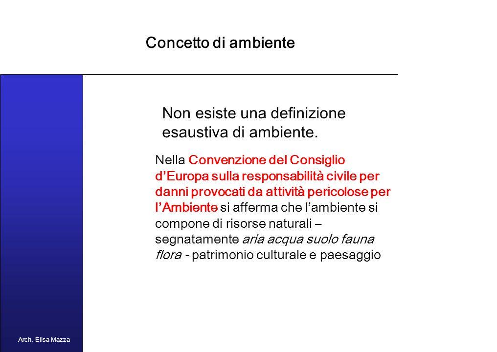 MANCUSO 2005 Concetto di ambiente Arch. Elisa Mazza