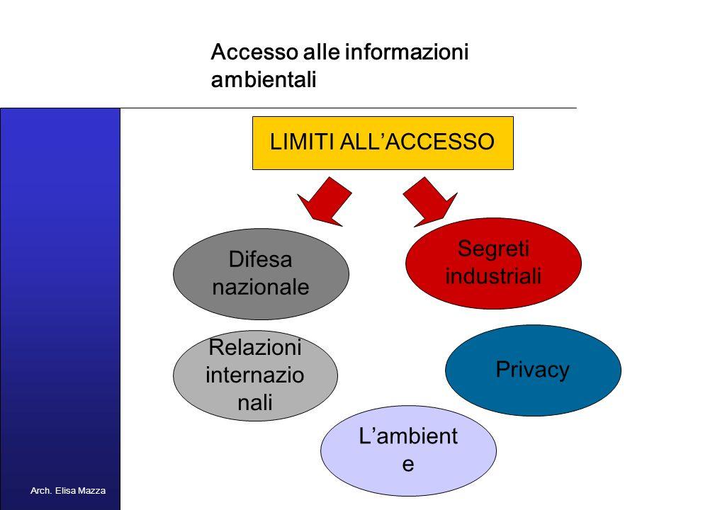 MANCUSO 2005 Accesso alle informazioni ambientali Quali sono le informazioni ambientali.