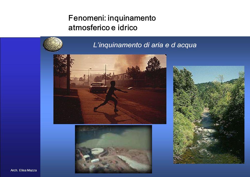 MANCUSO 2005 Concetto di inquinamento Arch. Elisa Mazza