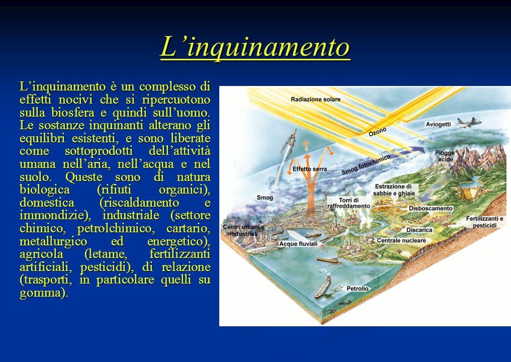 Linquinamento Linquinamento è un complesso di effetti nocivi che si ripercuotono sulla biosfera e quindi sulluomo. Le sostanze inquinanti alterano gli