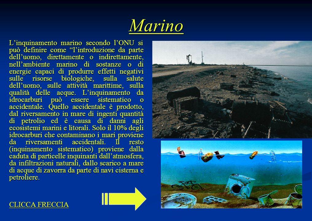 Marino Linquinamento marino secondo lONU si può definire come lintroduzione da parte delluomo, direttamente o indirettamente, nellambiente marino di s