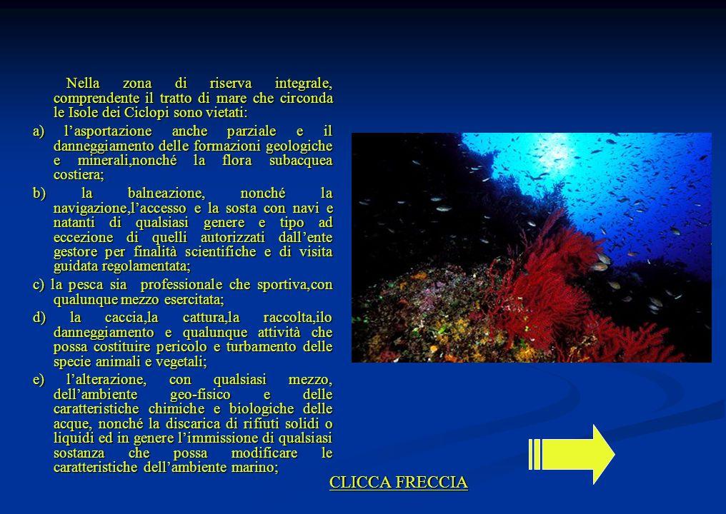 Nella zona di riserva integrale, comprendente il tratto di mare che circonda le Isole dei Ciclopi sono vietati: Nella zona di riserva integrale, compr