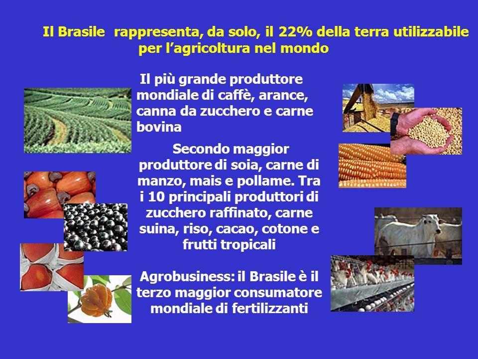 Il Brasile rappresenta, da solo, il 22% della terra utilizzabile per lagricoltura nel mondo Il più grande produttore mondiale di caffè, arance, canna