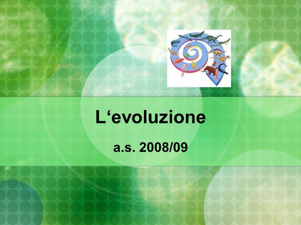 Levoluzione a.s. 2008/09