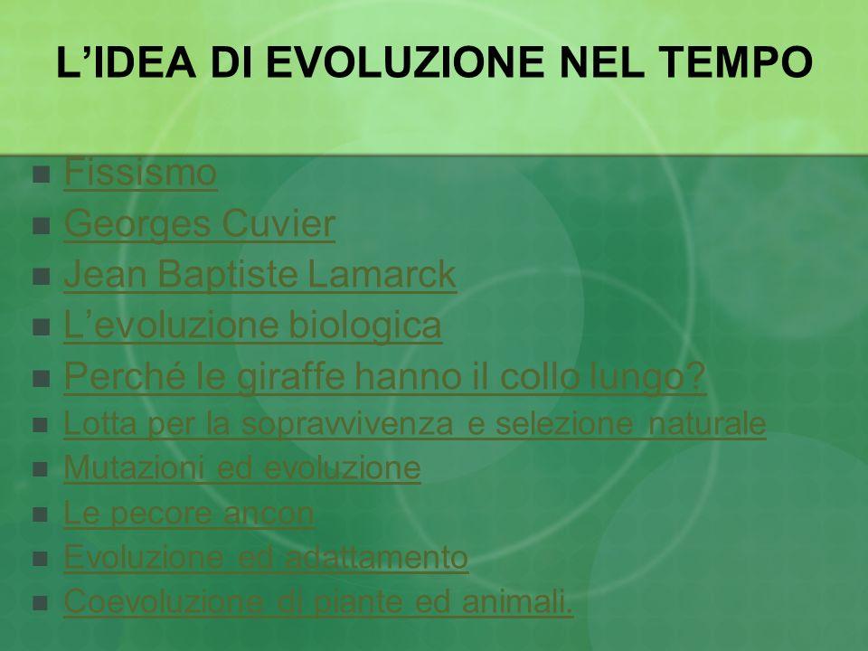 LIDEA DI EVOLUZIONE NEL TEMPO Fissismo Georges Cuvier Jean Baptiste Lamarck Levoluzione biologica Perché le giraffe hanno il collo lungo? Lotta per la