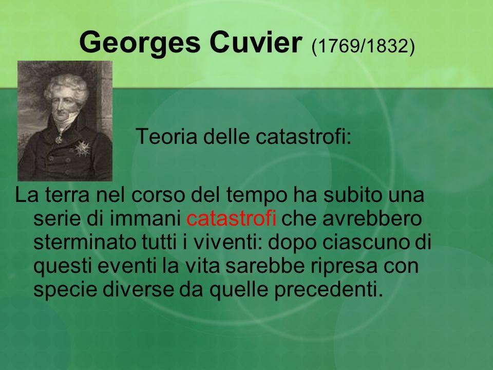 Georges Cuvier (1769/1832) Teoria delle catastrofi: La terra nel corso del tempo ha subito una serie di immani catastrofi che avrebbero sterminato tut