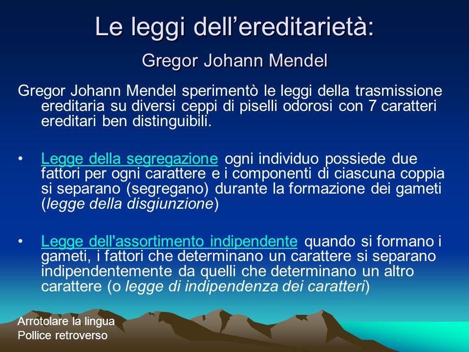 Le leggi dellereditarietà: Gregor Johann Mendel Gregor Johann Mendel sperimentò le leggi della trasmissione ereditaria su diversi ceppi di piselli odo