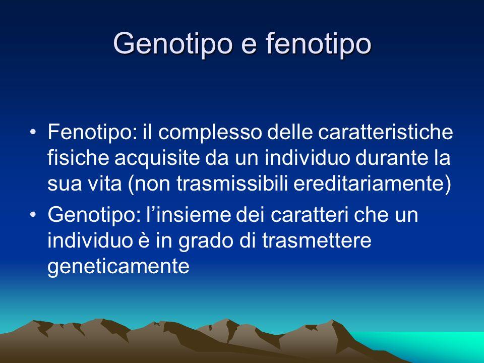 Genotipo e fenotipo Fenotipo: il complesso delle caratteristiche fisiche acquisite da un individuo durante la sua vita (non trasmissibili ereditariame