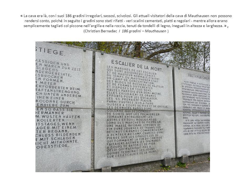 « La cava era là, con i suoi 186 gradini irregolari, sassosi, scivolosi. Gli attuali visitatori della cava di Mauthausen non possono rendersi conto, p