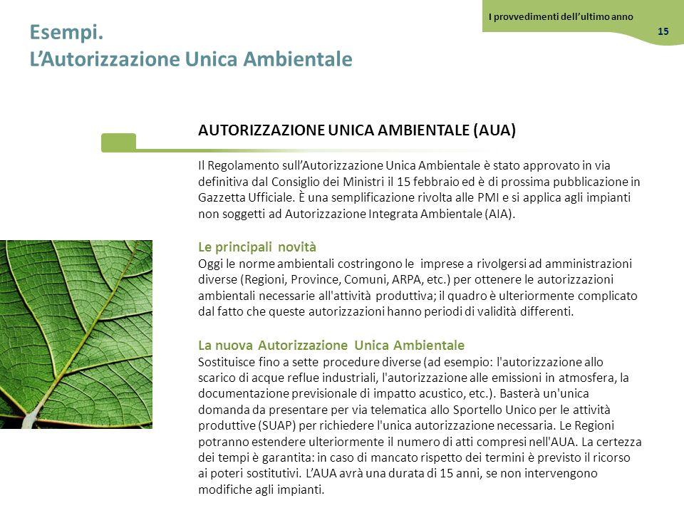 Esempi. LAutorizzazione Unica Ambientale Il Regolamento sullAutorizzazione Unica Ambientale è stato approvato in via definitiva dal Consiglio dei Mini