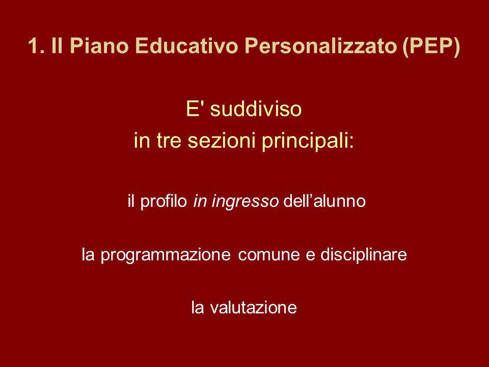 1. Il Piano Educativo Personalizzato (PEP) E' suddiviso in tre sezioni principali: il profilo in ingresso dellalunno la programmazione comune e discip
