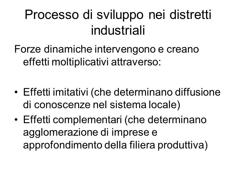 Processo di sviluppo nei distretti industriali Forze dinamiche intervengono e creano effetti moltiplicativi attraverso: Effetti imitativi (che determi