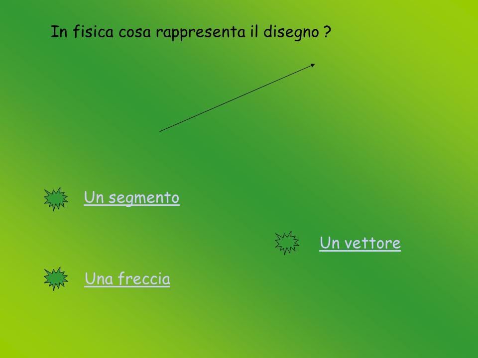 In fisica cosa rappresenta il disegno Un segmento Una freccia Un vettore