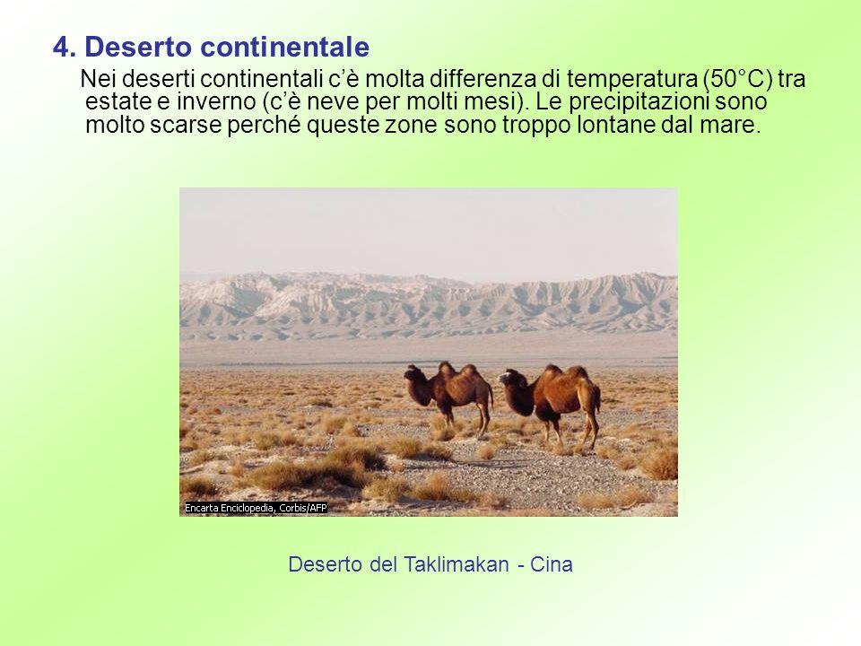 4. Deserto continentale Nei deserti continentali cè molta differenza di temperatura (50°C) tra estate e inverno (cè neve per molti mesi). Le precipita