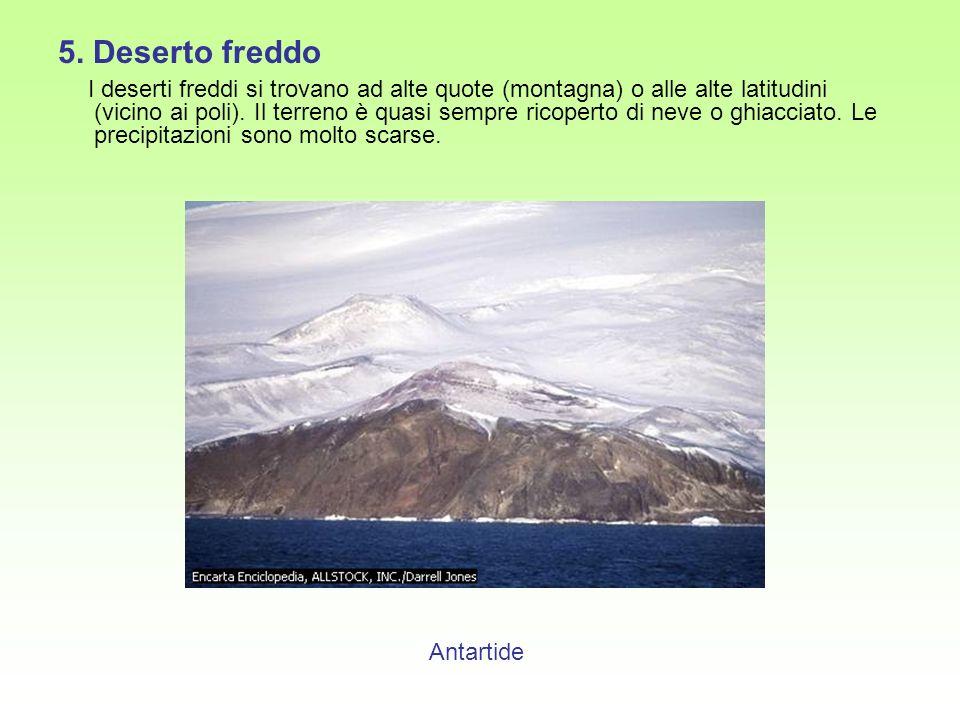 5. Deserto freddo I deserti freddi si trovano ad alte quote (montagna) o alle alte latitudini (vicino ai poli). Il terreno è quasi sempre ricoperto di