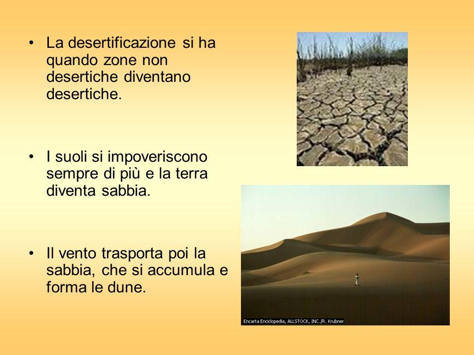 La desertificazione si ha quando zone non desertiche diventano desertiche. I suoli si impoveriscono sempre di più e la terra diventa sabbia. Il vento