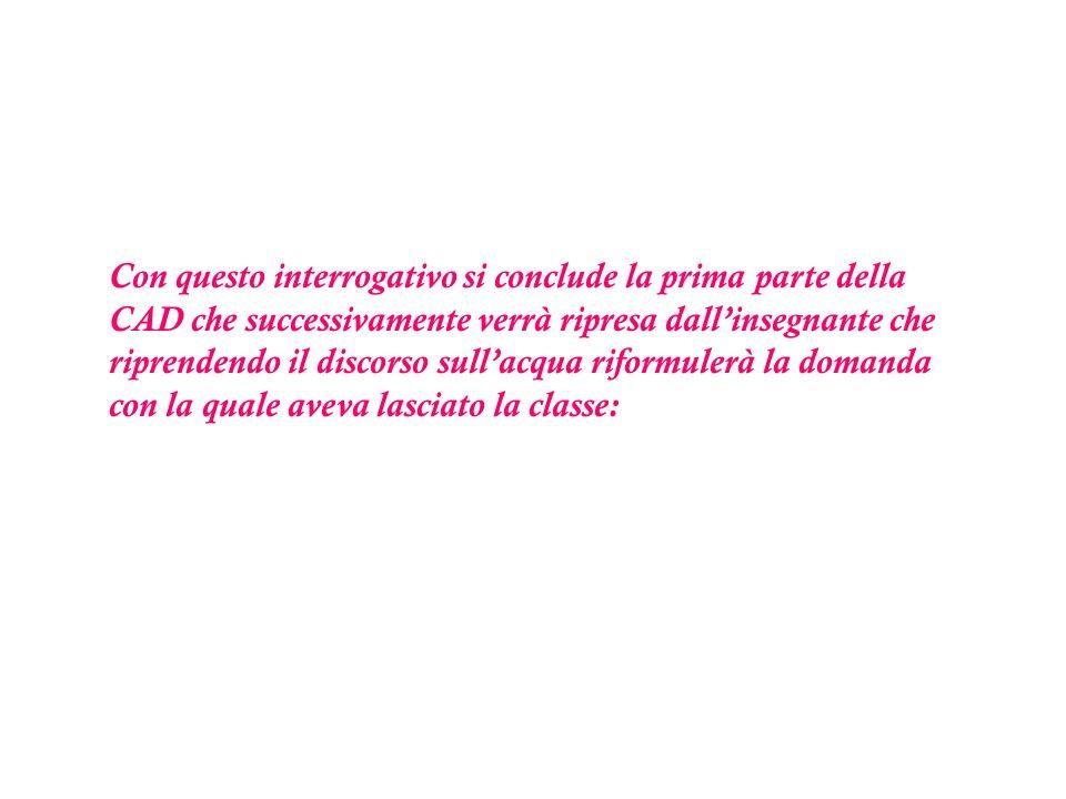 Fase della condivisione, dellintroduzione delle parole chiave e della metacognizione n.