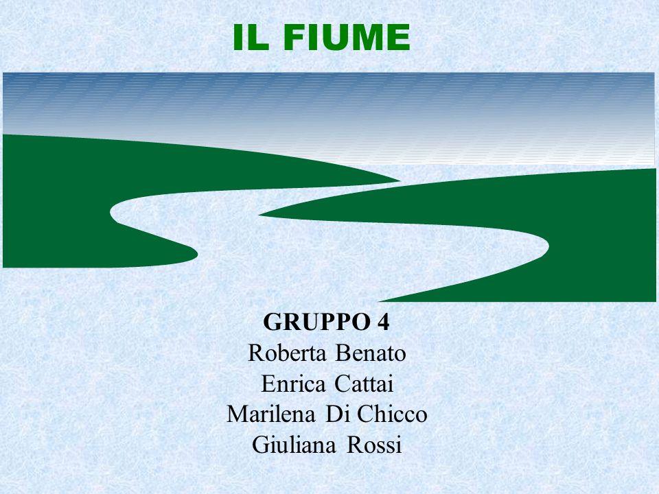 IL FIUME GRUPPO 4 Roberta Benato Enrica Cattai Marilena Di Chicco Giuliana Rossi