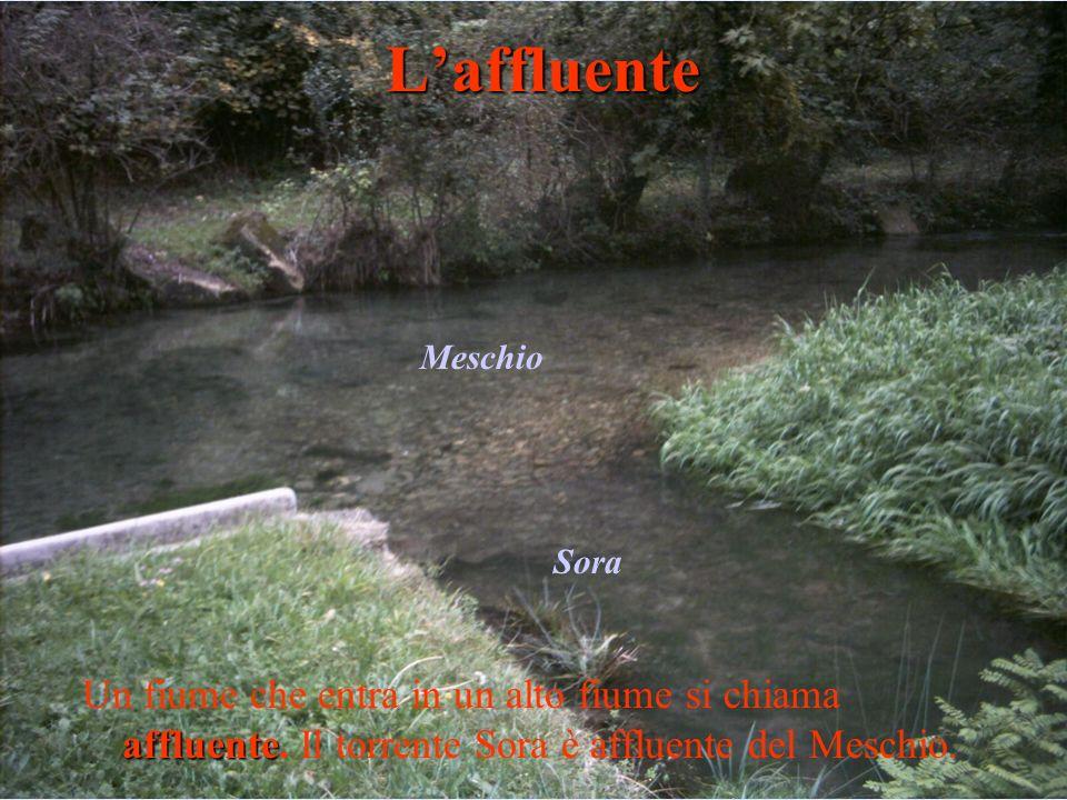 affluente Un fiume che entra in un alto fiume si chiama affluente. Il torrente Sora è affluente del Meschio.Laffluente Sora Meschio