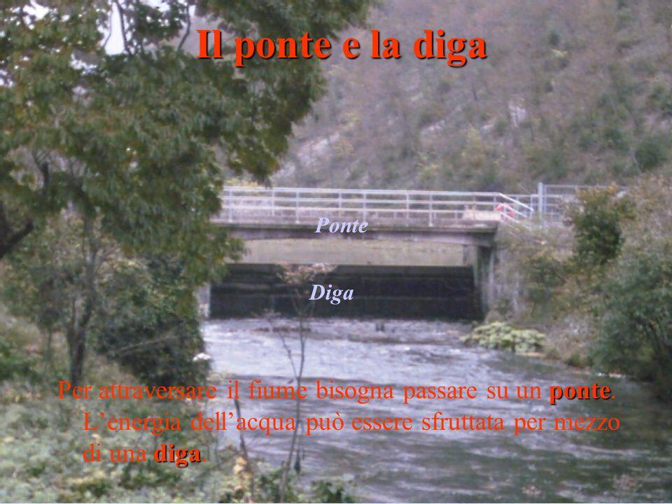 ponte diga Per attraversare il fiume bisogna passare su un ponte. Lenergia dellacqua può essere sfruttata per mezzo di una diga. Il ponte e la diga Di