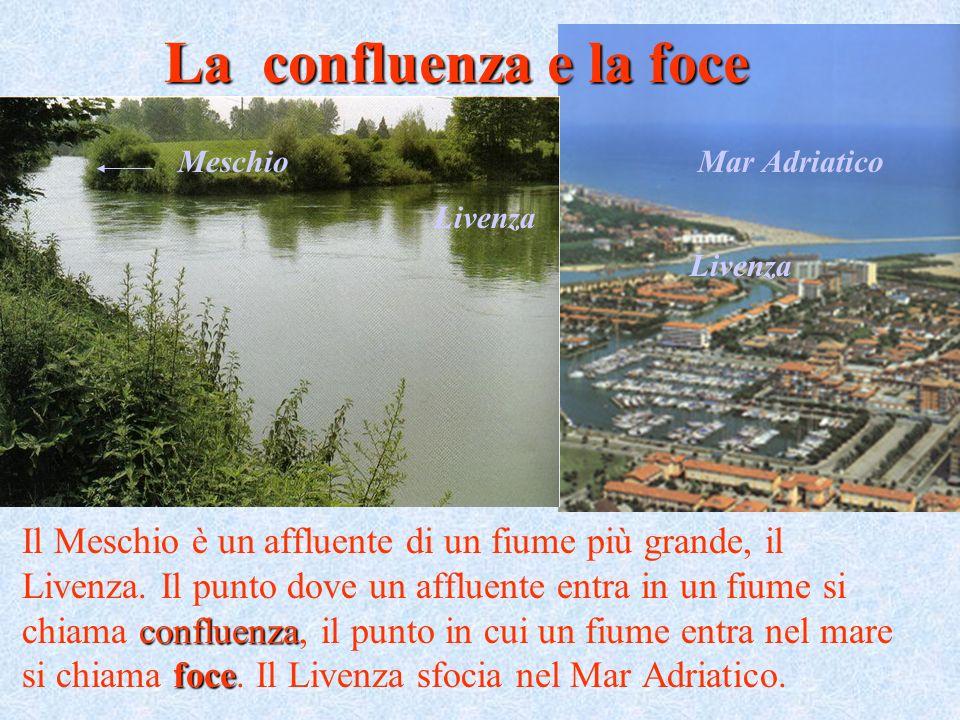 confluenza foce Il Meschio è un affluente di un fiume più grande, il Livenza. Il punto dove un affluente entra in un fiume si chiama confluenza, il pu