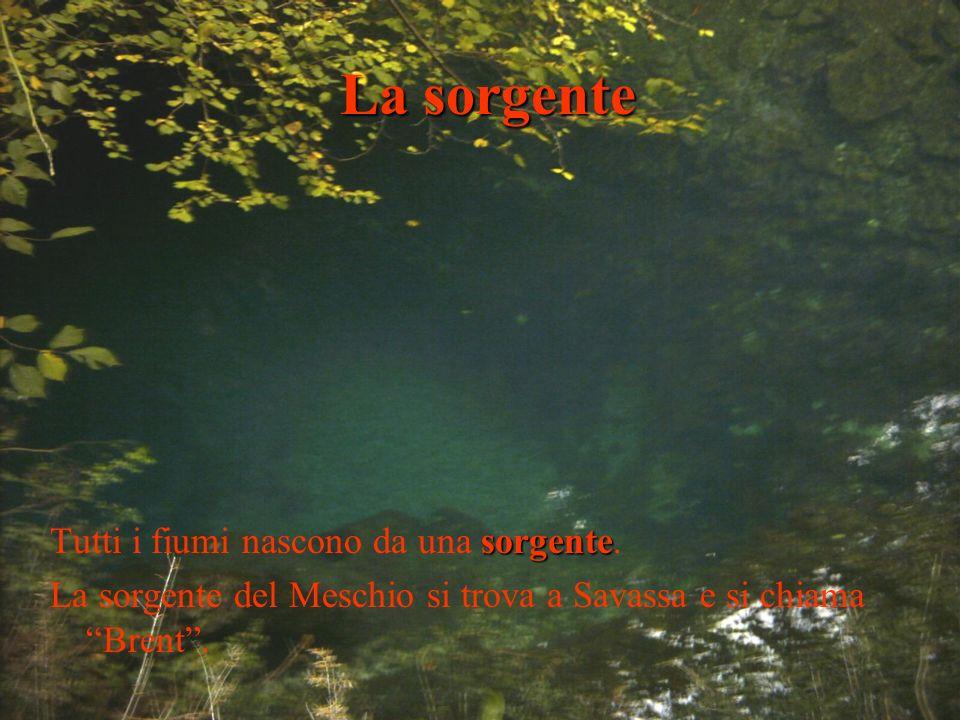 La sorgente sorgente Tutti i fiumi nascono da una sorgente. La sorgente del Meschio si trova a Savassa e si chiama Brent.