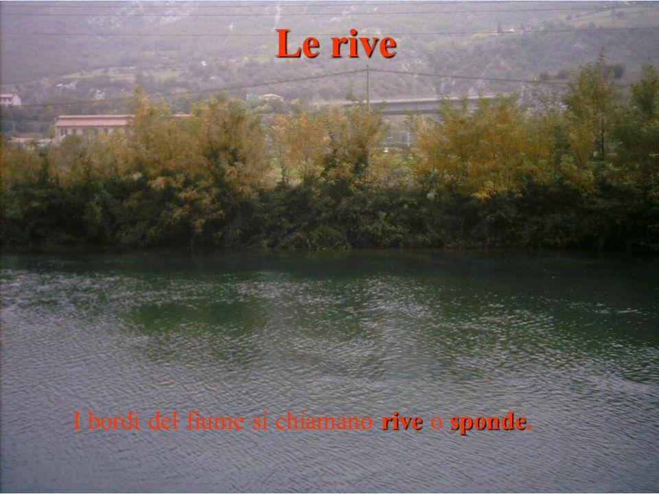 rivesponde I bordi del fiume si chiamano rive o sponde. Le rive