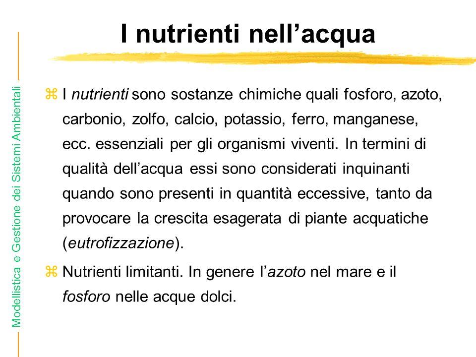 Modellistica e Gestione dei Sistemi Ambientali I nutrienti nellacqua I nutrienti sono sostanze chimiche quali fosforo, azoto, carbonio, zolfo, calcio, potassio, ferro, manganese, ecc.