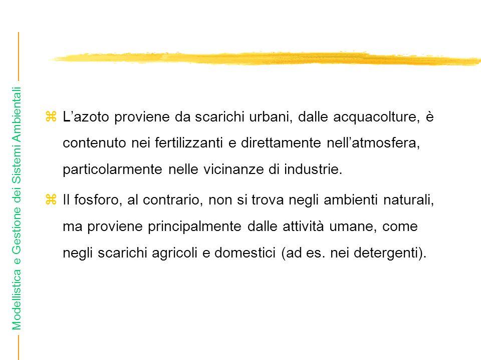 Modellistica e Gestione dei Sistemi Ambientali Lazoto proviene da scarichi urbani, dalle acquacolture, è contenuto nei fertilizzanti e direttamente nellatmosfera, particolarmente nelle vicinanze di industrie.