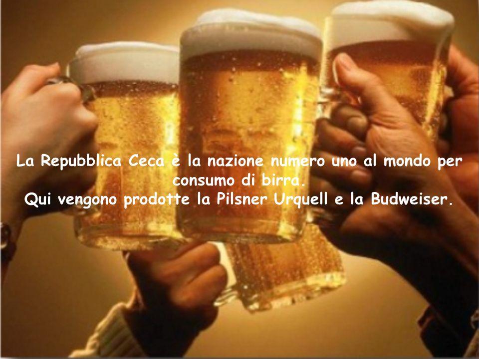 La Repubblica Ceca è la nazione numero uno al mondo per consumo di birra. Qui vengono prodotte la Pilsner Urquell e la Budweiser.