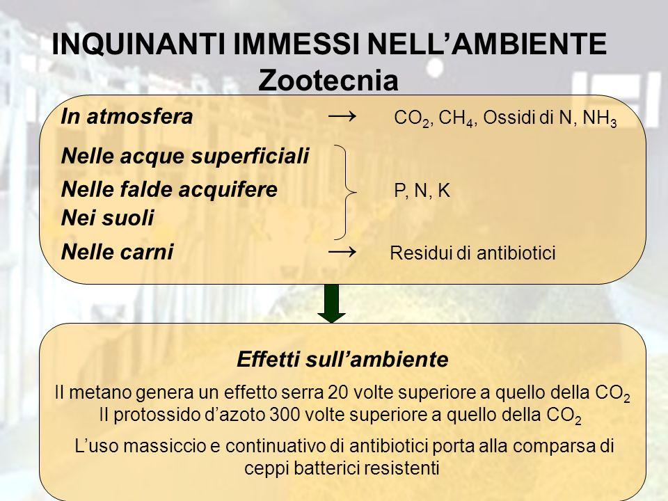 INQUINANTI IMMESSI NELLAMBIENTE Zootecnia In atmosfera CO 2, CH 4, Ossidi di N, NH 3 Nelle acque superficiali Nelle falde acquifere P, N, K Nei suoli