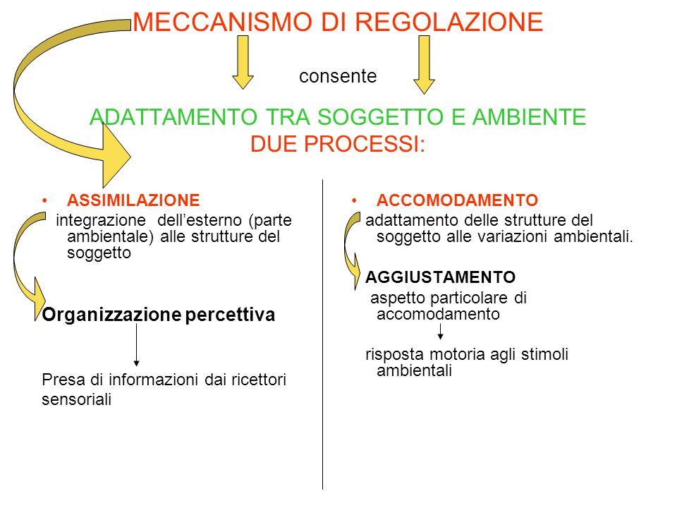 MECCANISMO DI REGOLAZIONE consente ADATTAMENTO TRA SOGGETTO E AMBIENTE DUE PROCESSI: ASSIMILAZIONE integrazione dellesterno (parte ambientale) alle st