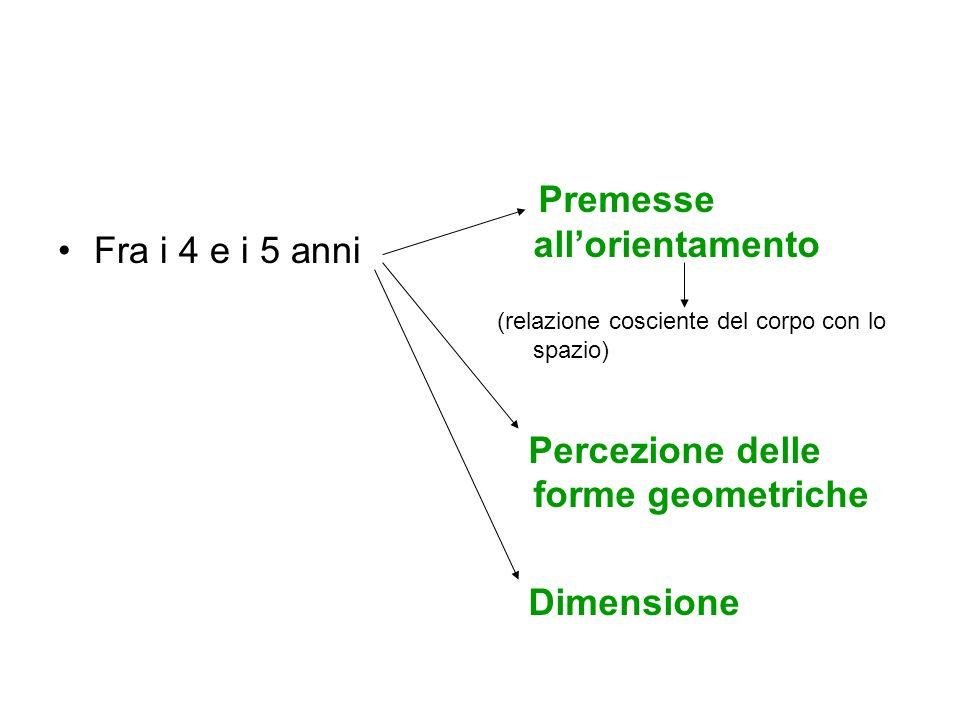 Fra i 4 e i 5 anni Premesse allorientamento (relazione cosciente del corpo con lo spazio) Percezione delle forme geometriche Dimensione